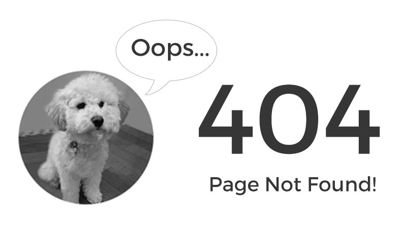 404 Page not found, only Rosie
