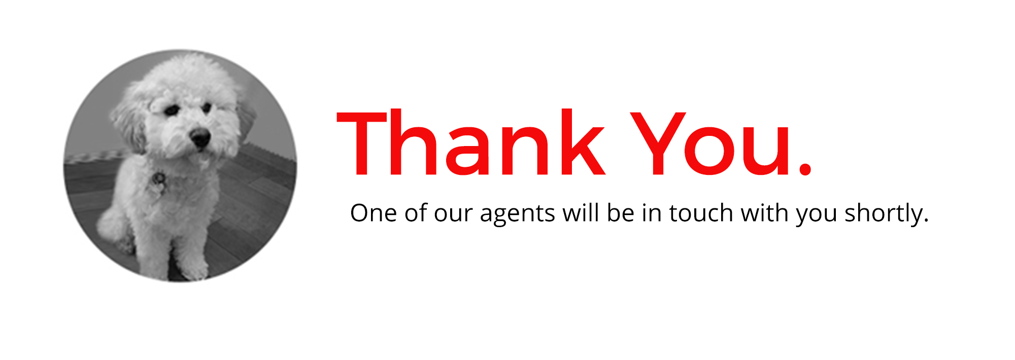 Thank you from Rosie and the Email Company Team