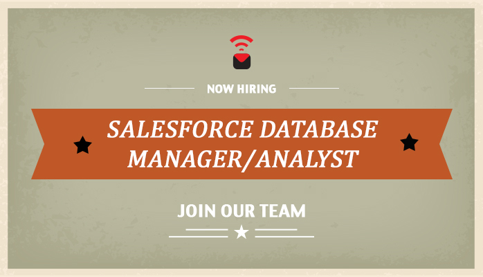 Salesforce Database Manager/Analyst