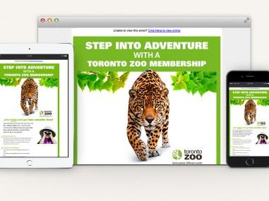 Toronto-Zoo-Membership-Email